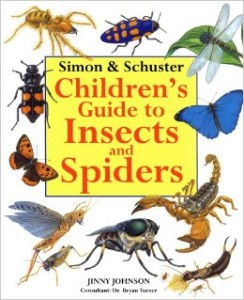 Children's Guide to Insects and Spiders