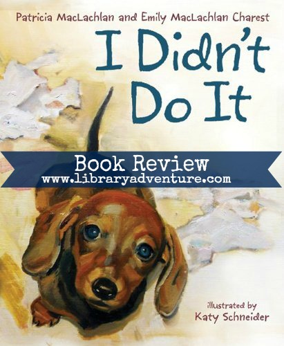 I Didn't Do It (a Review)