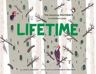Lifetime by Lola M. Schaefer, illustrated by Christopher Silas Neal